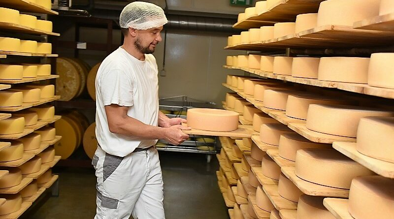 M2magazine - Quality milk essential for quality cheese in Switzerland - MANAGER
